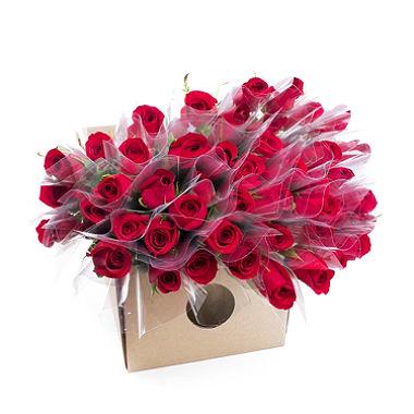 1633 Rosas embaladas (100,250,500 rosas)