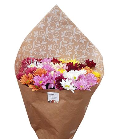 2472 Ramalhete de Flores do Campo