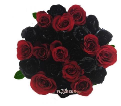 2577 Rosas Negras e Vermelhas