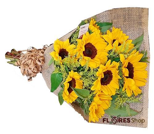 2764 Flor Mais linda - Girassol