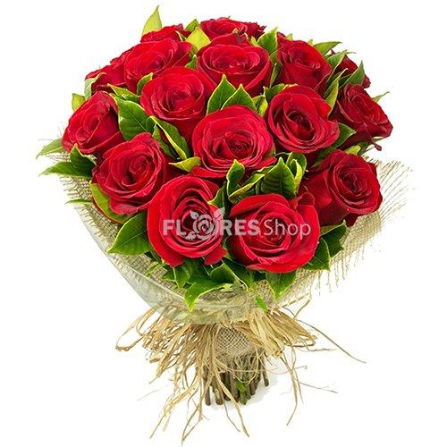 411 Amor de Rosas