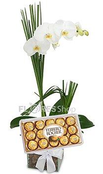 415 Amor de Orquidea com Ferrero