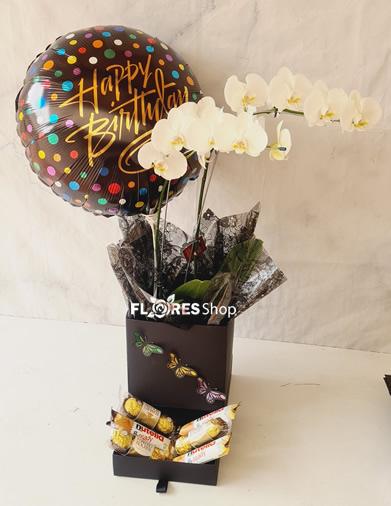 4832 Happy Birthday