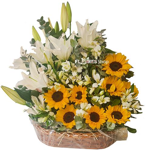 4850 Flores Esplendidas