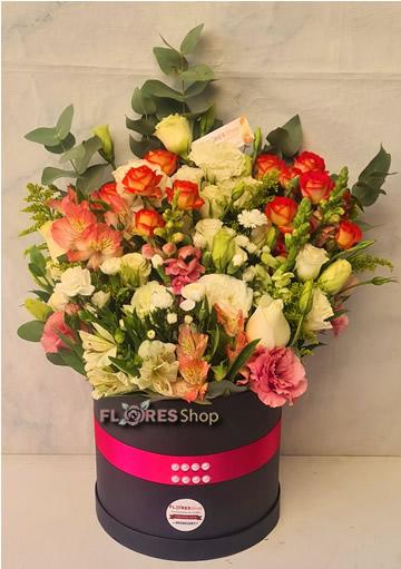 5540 Box Belas Flores