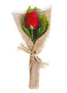 582 Rosas Embaladas com Juta