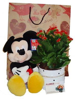 779 Mickey e Flores