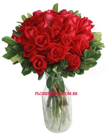 814 Rosas, Transmitem Amor